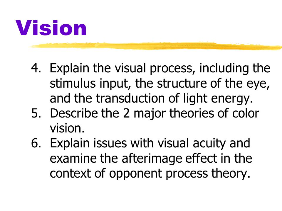 Vision 4. Explain the visual process, including the stimulus input, the structure of the eye, and the transduction of light energy.