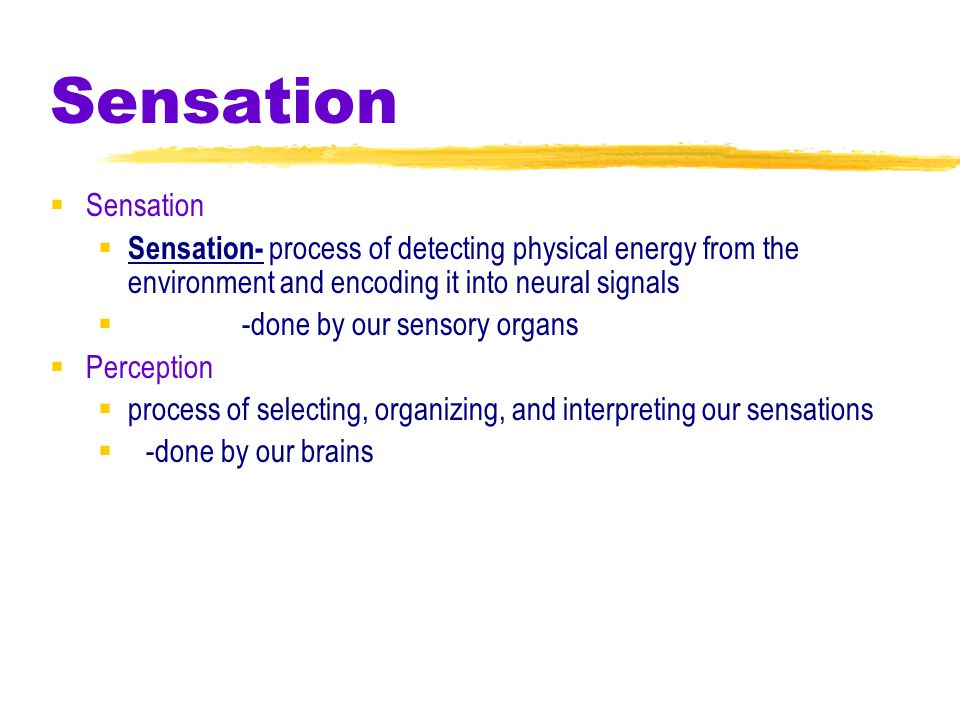 -done by our sensory organs Perception