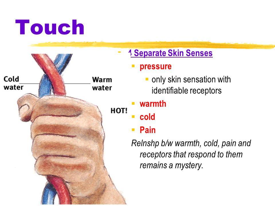 Touch 4 Separate Skin Senses pressure