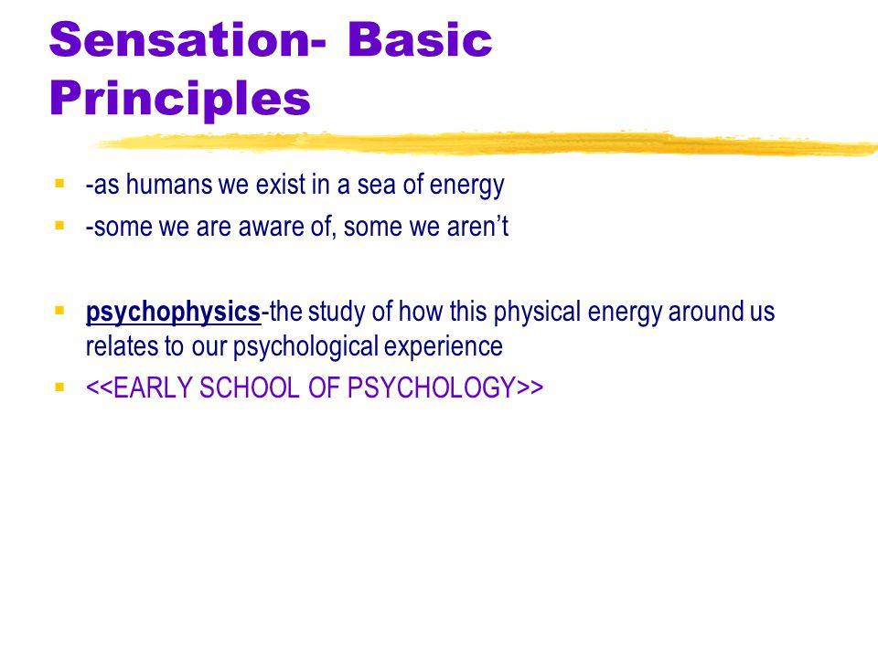 Sensation- Basic Principles