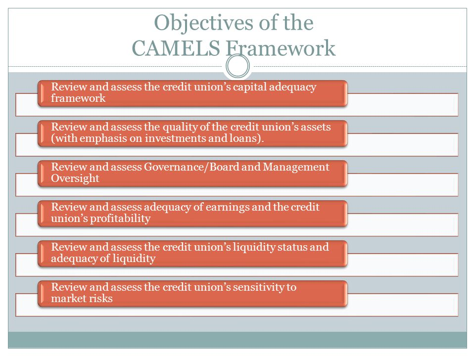 Objectives of the CAMELS Framework