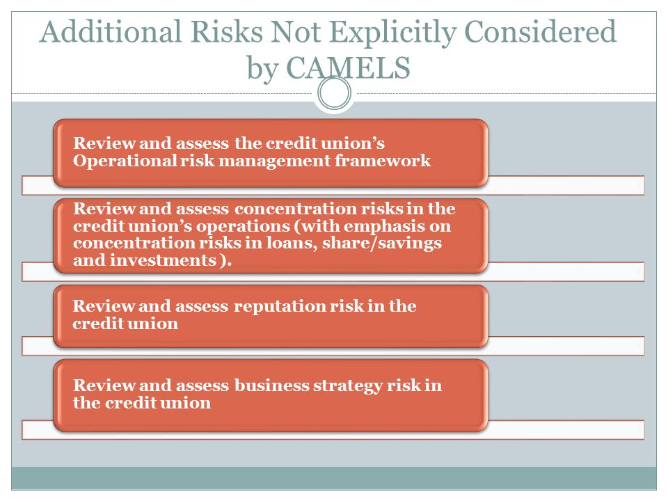 Additional Risks Not Explicitly Considered by CAMELS