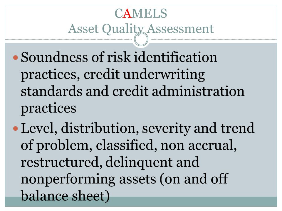CAMELS Asset Quality Assessment