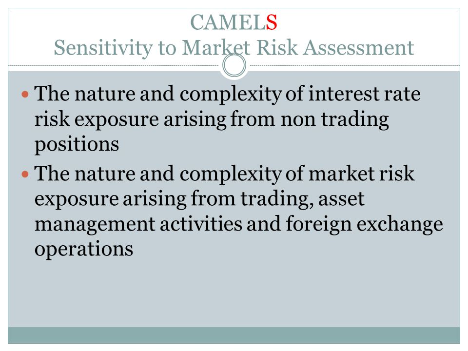 CAMELS Sensitivity to Market Risk Assessment