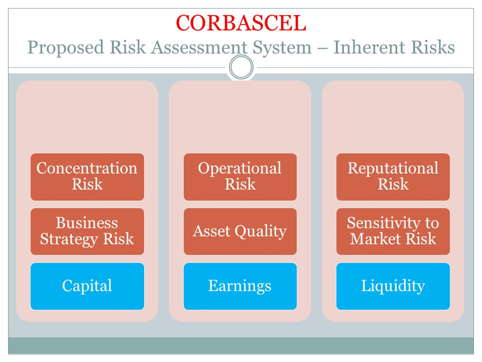 CORBASCEL Proposed Risk Assessment System – Inherent Risks