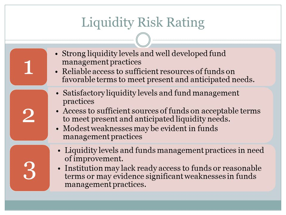 Liquidity Risk Rating Strong liquidity levels and well developed fund management practices.