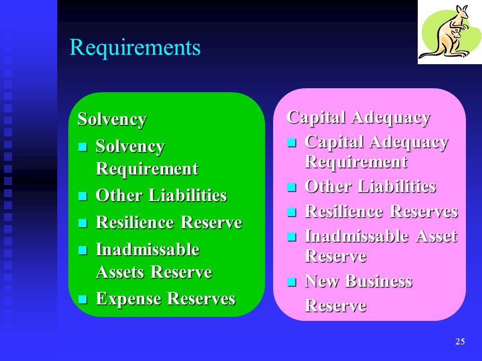 Requirements Solvency Solvency Requirement Other Liabilities