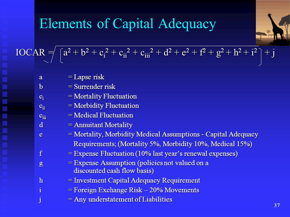 Elements of Capital Adequacy
