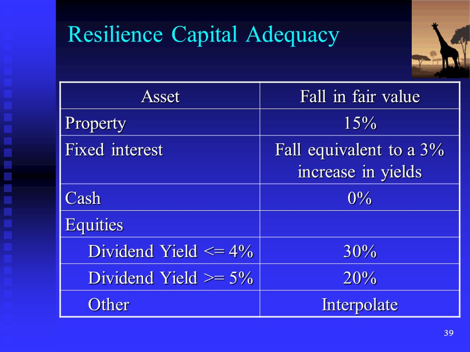 Resilience Capital Adequacy