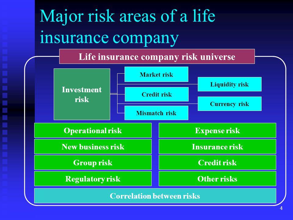 Major risk areas of a life insurance company