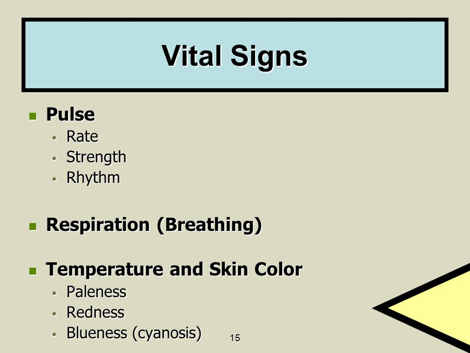 Vital Signs Pulse Respiration (Breathing) Temperature and Skin Color