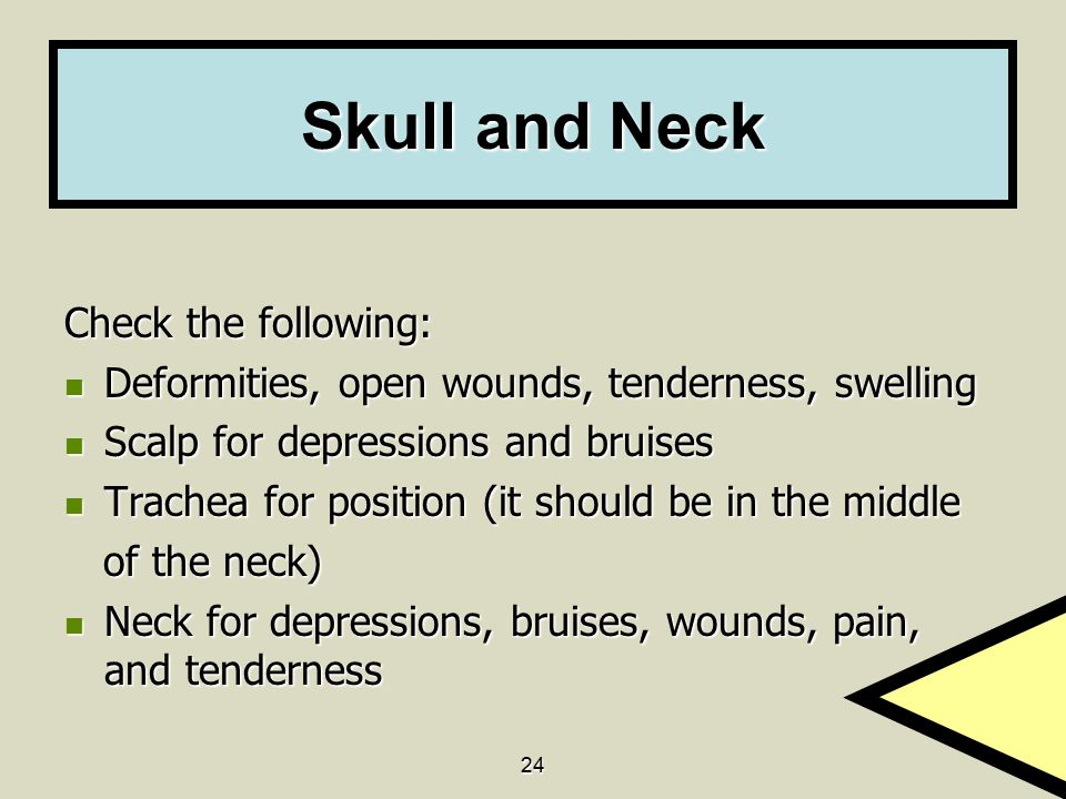 Skull and Neck Check the following:
