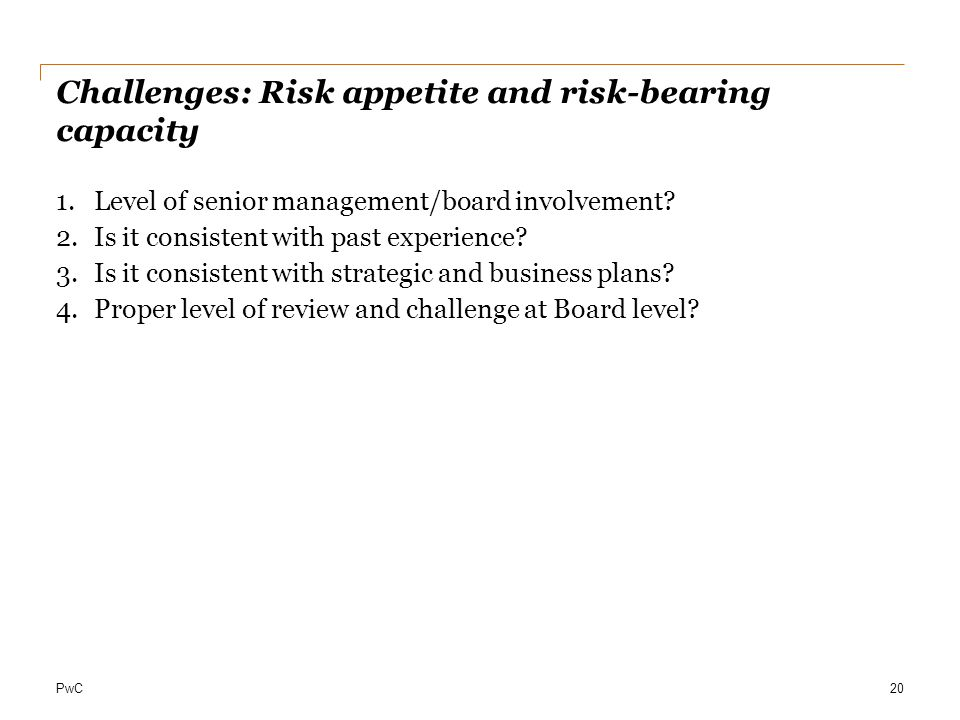 Challenges: Risk appetite and risk-bearing capacity