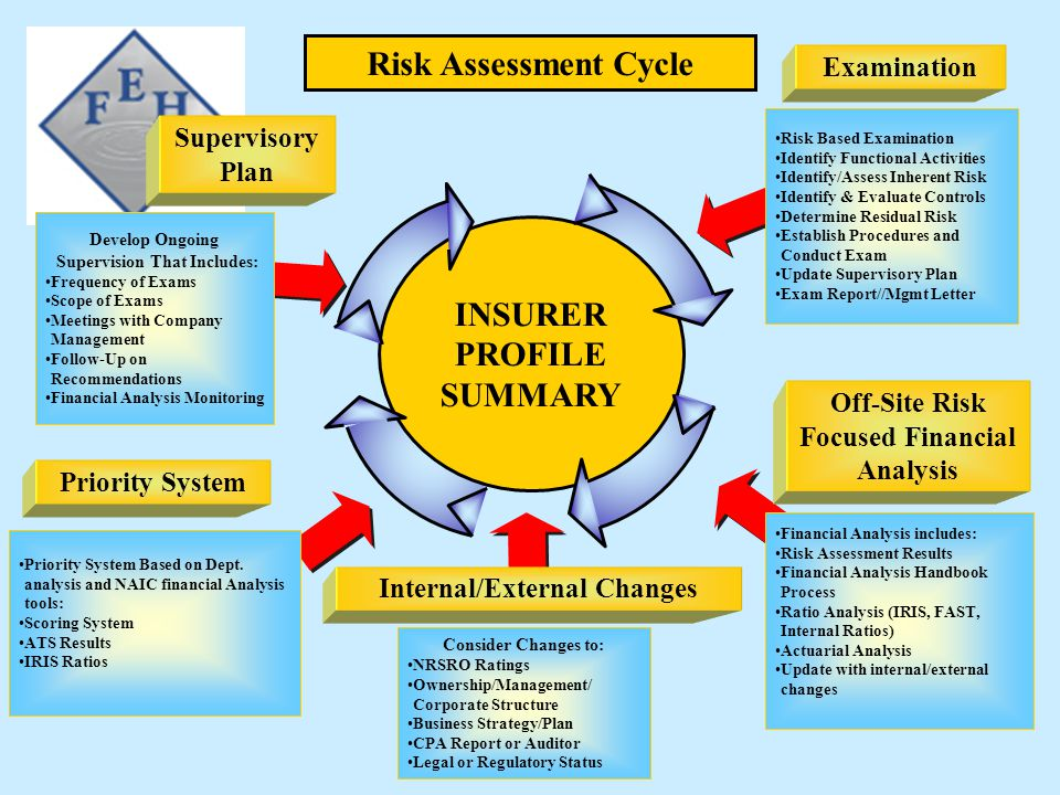 Risk Assessment Cycle INSURER PROFILE SUMMARY