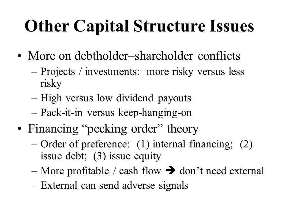 Other Capital Structure Issues
