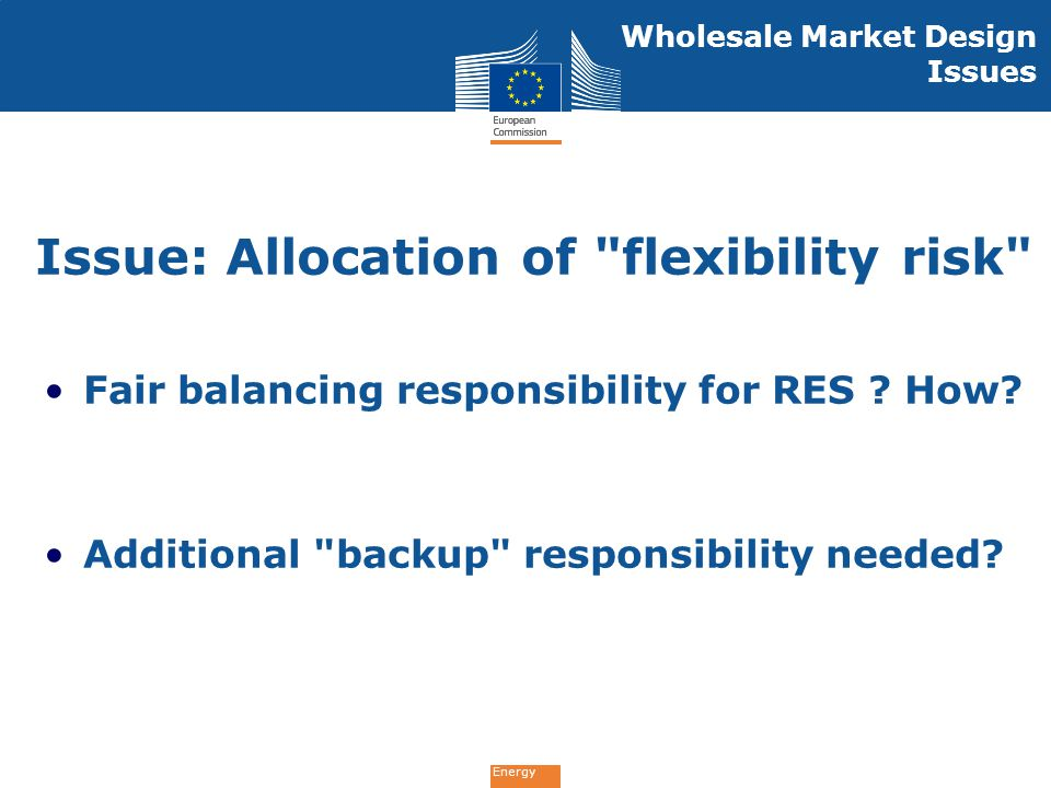 Issue: Allocation of flexibility risk