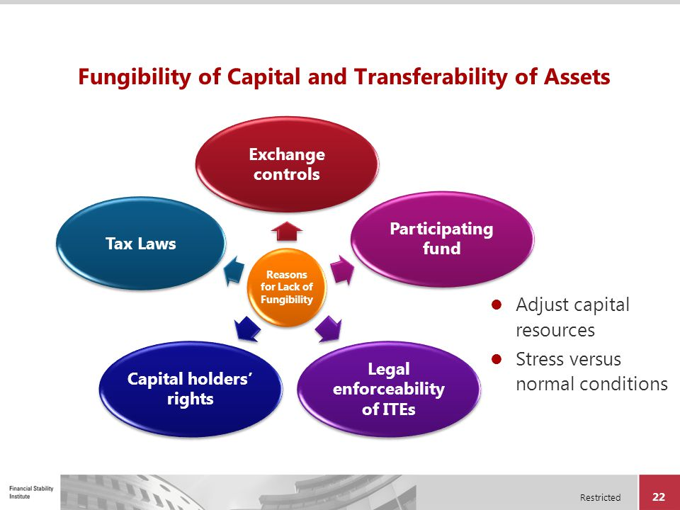 Fungibility of Capital and Transferability of Assets
