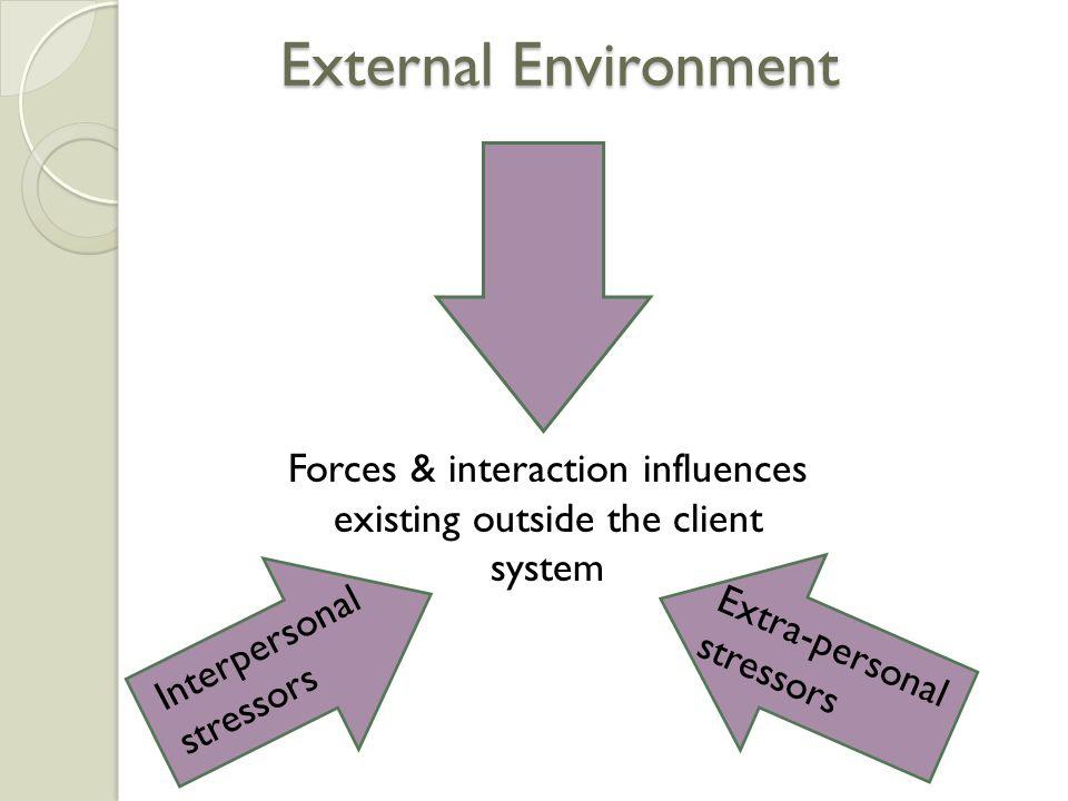 External Environment Forces & interaction influences