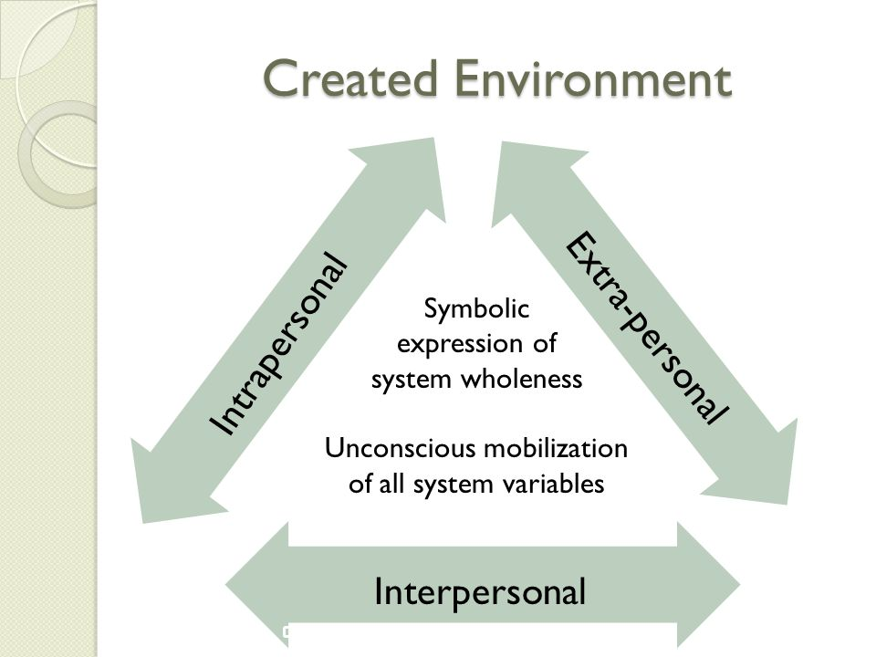 Created Environment Extra-personal Intrapersonal Interpersonal