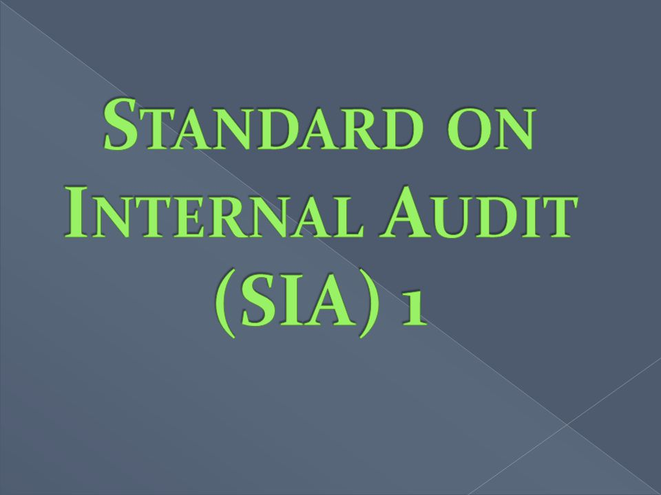 Standard on Internal Audit (SIA) 1