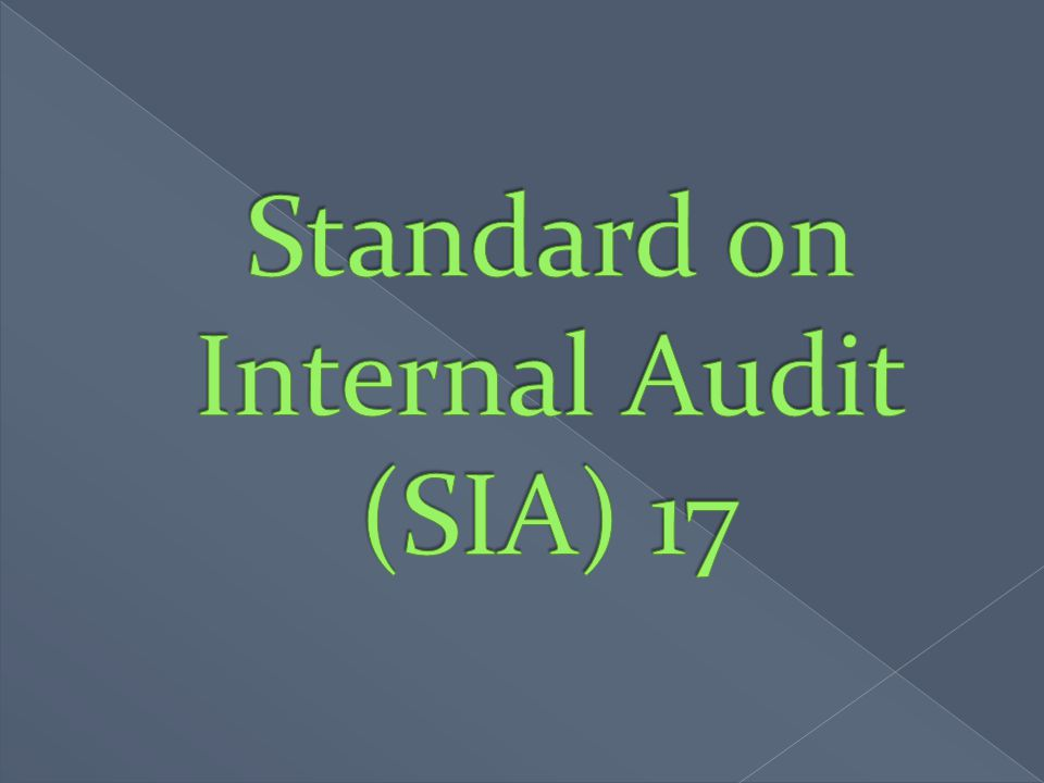 Standard on Internal Audit (SIA) 17