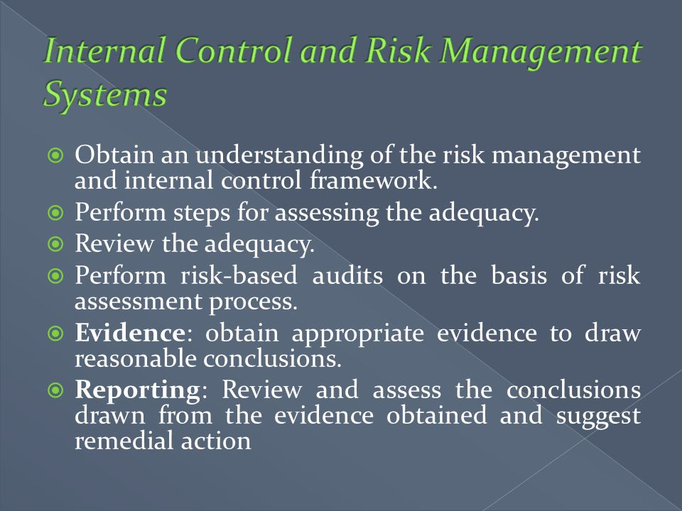 Internal Control and Risk Management Systems