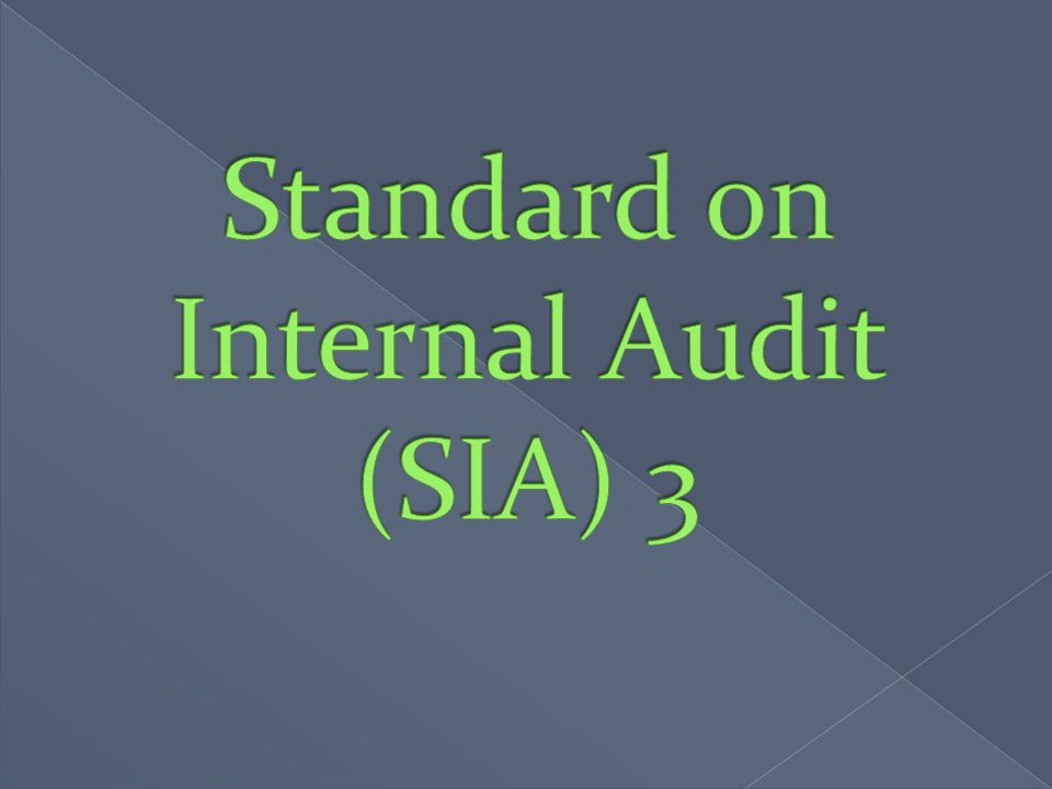 Standard on Internal Audit (SIA) 3