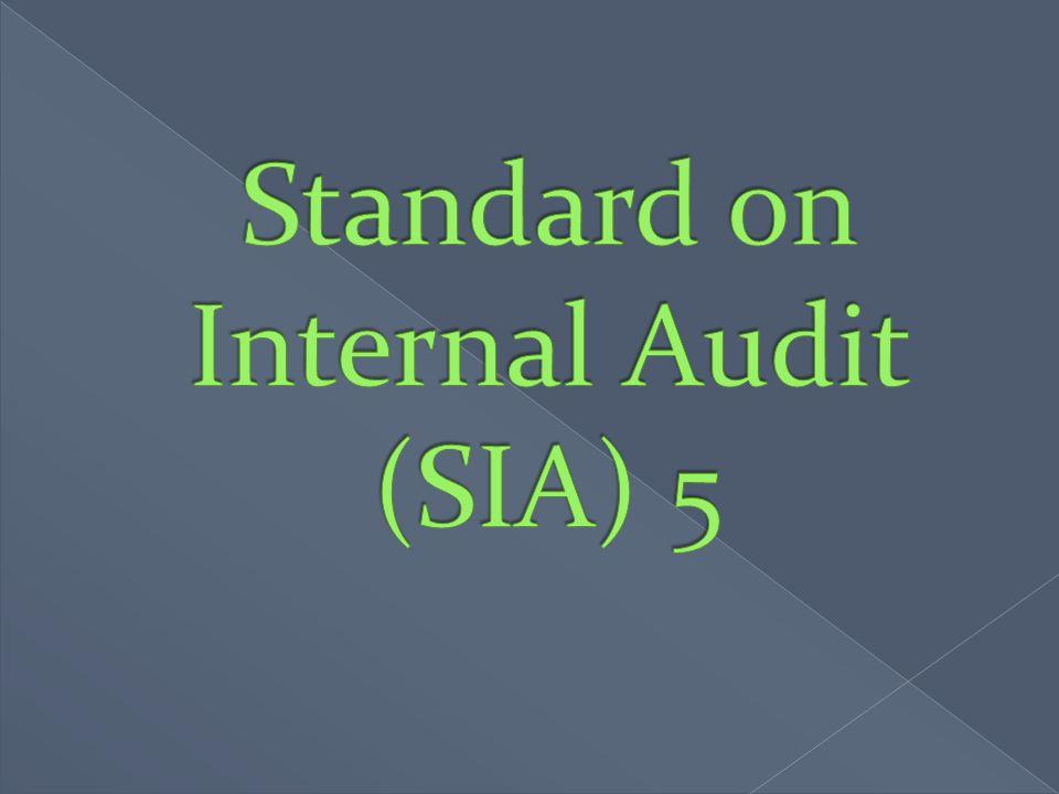 Standard on Internal Audit (SIA) 5