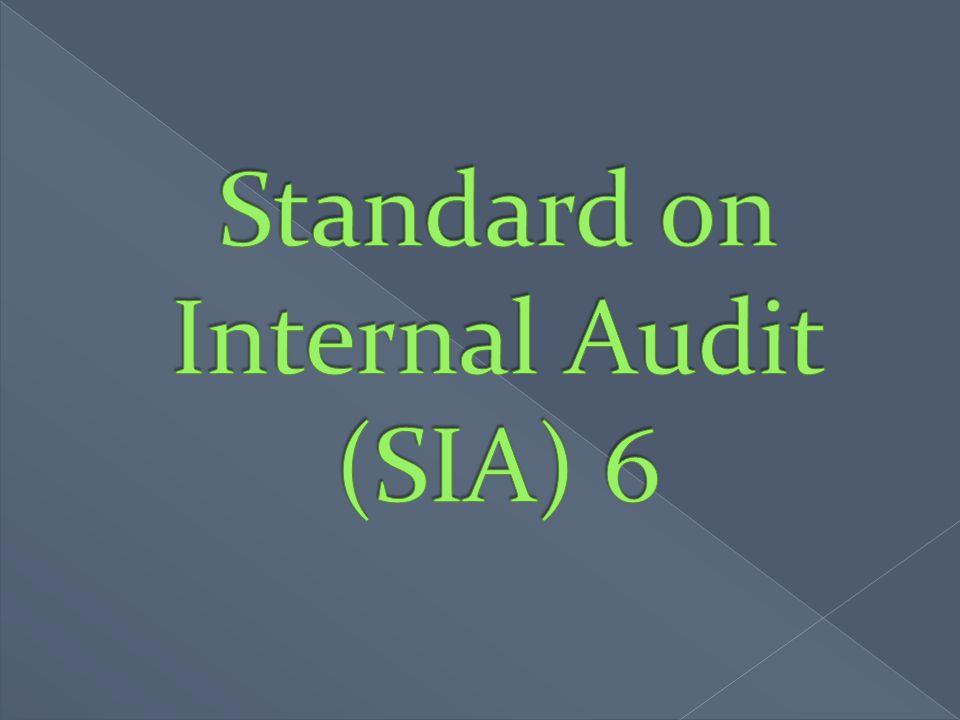 Standard on Internal Audit (SIA) 6