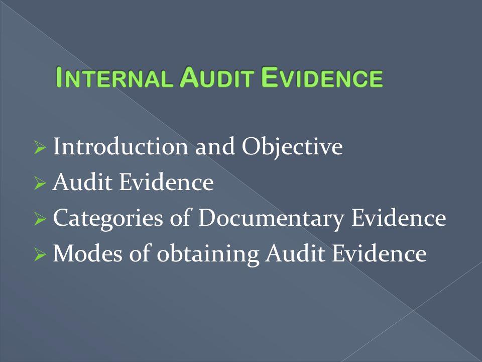 Internal Audit Evidence