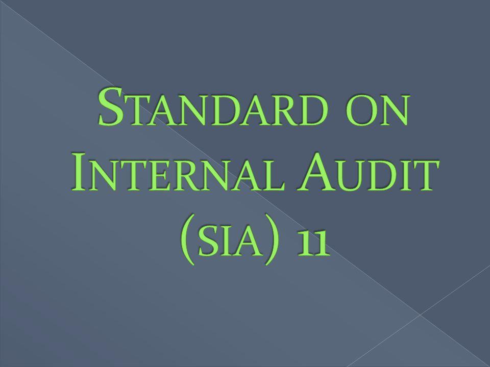 Standard on Internal Audit (sia) 11