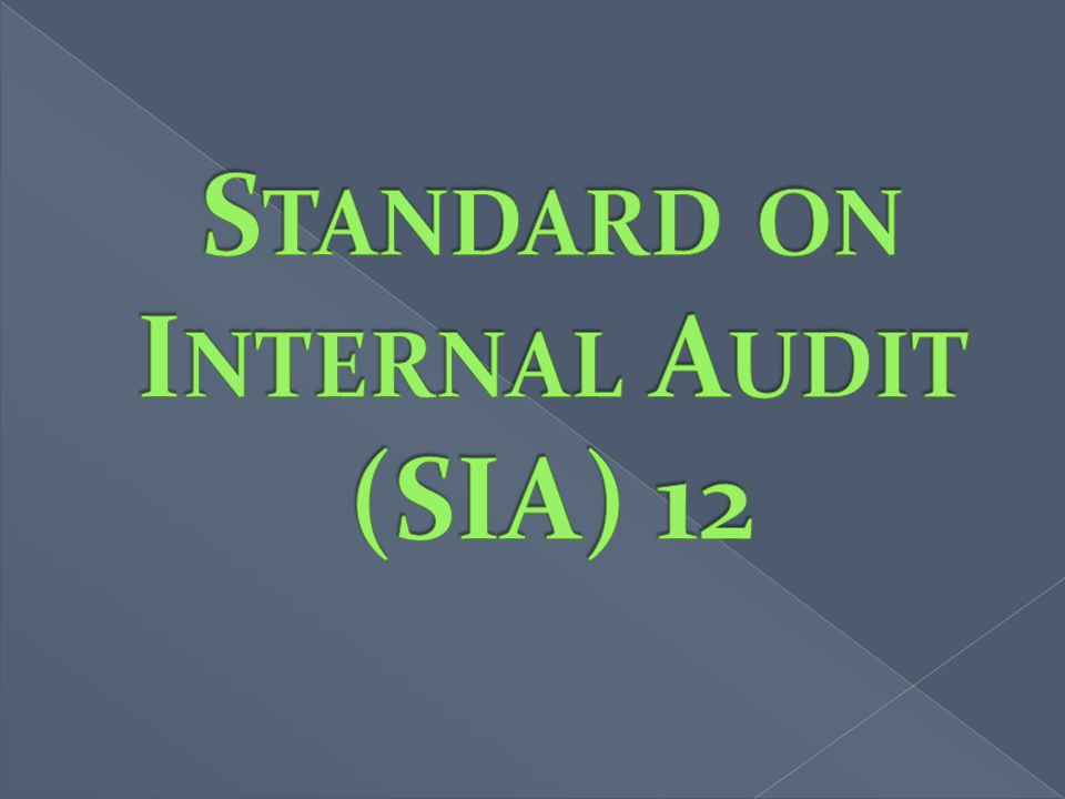 Standard on Internal Audit (SIA) 12