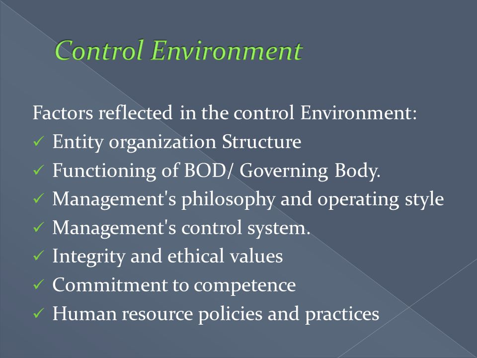 Control Environment Factors reflected in the control Environment: