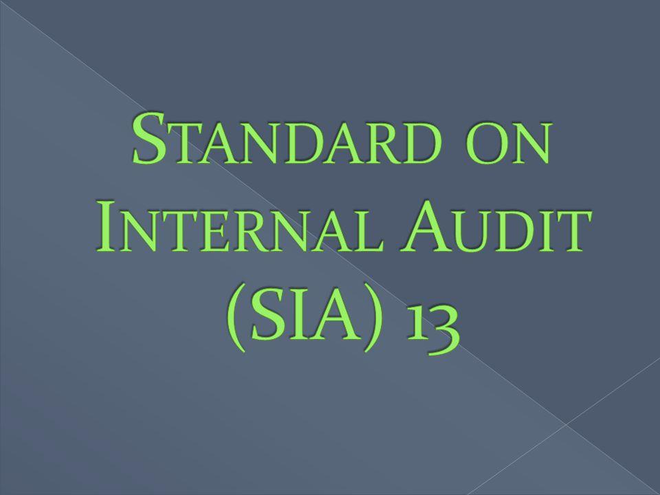 Standard on Internal Audit (SIA) 13