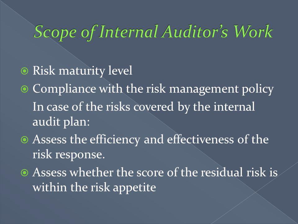 Scope of Internal Auditor's Work