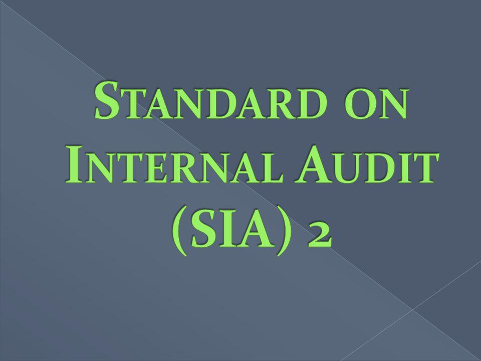 Standard on Internal Audit (SIA) 2