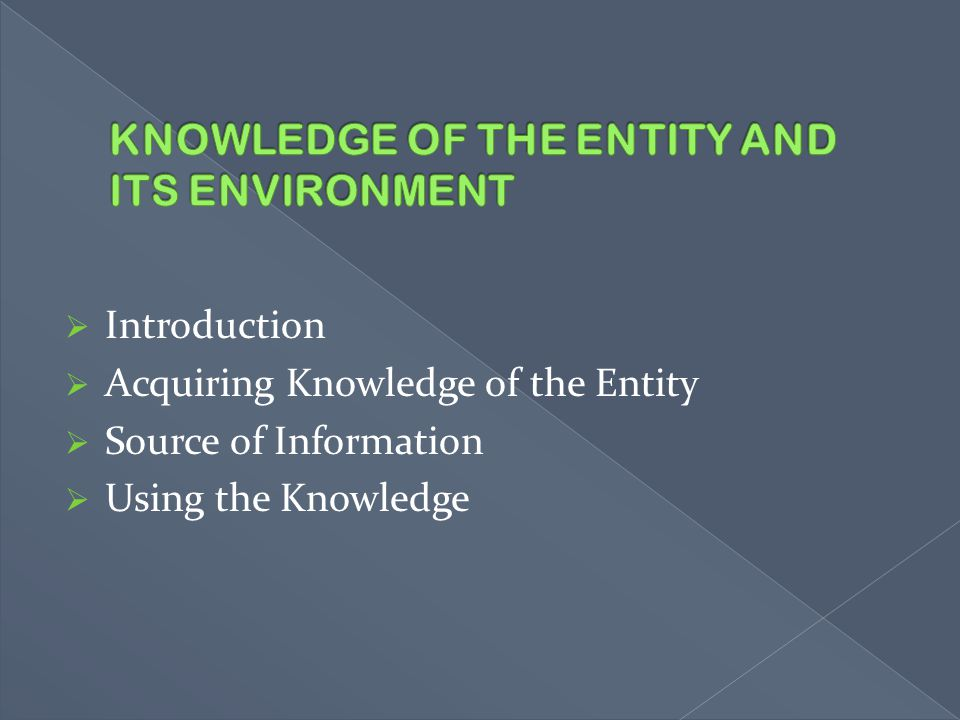 KNOWLEDGE OF THE ENTITY AND ITS ENVIRONMENT