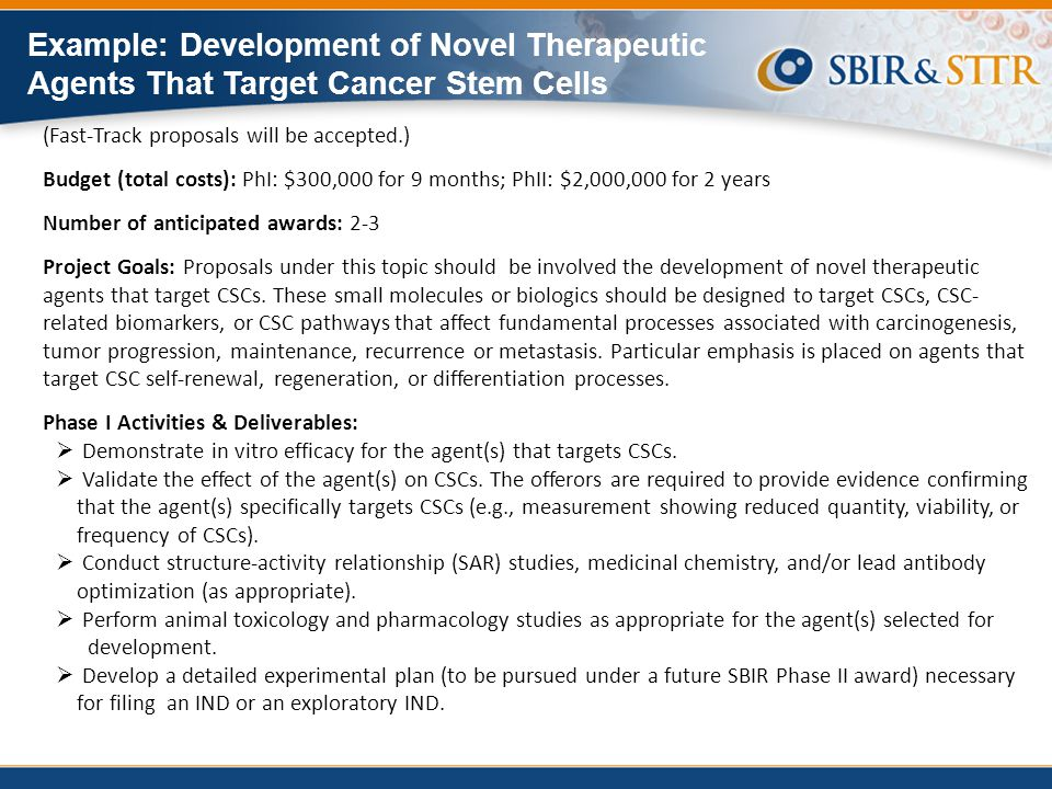 Example: Development of Novel Therapeutic Agents That Target Cancer Stem Cells
