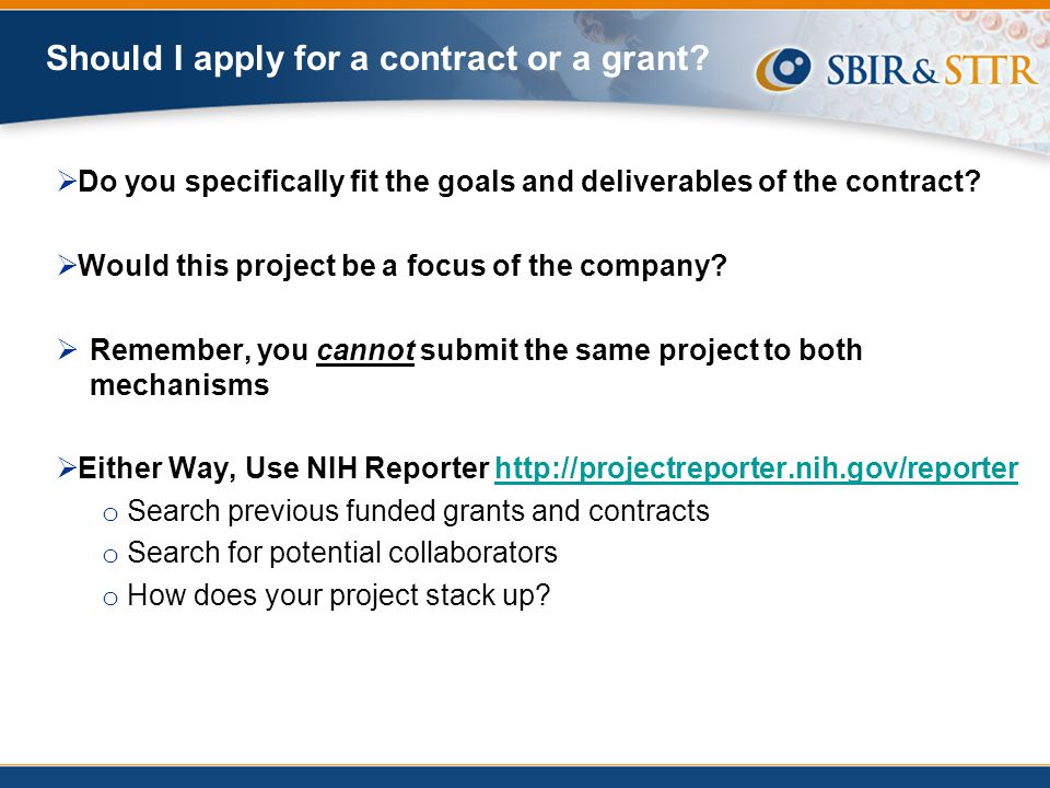 Should I apply for a contract or a grant