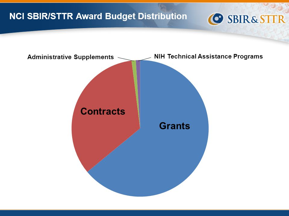 Administrative Supplements NIH Technical Assistance Programs