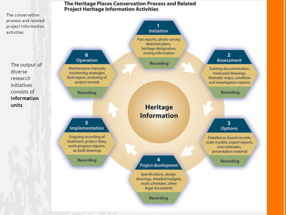 The conservation process and related project information activities