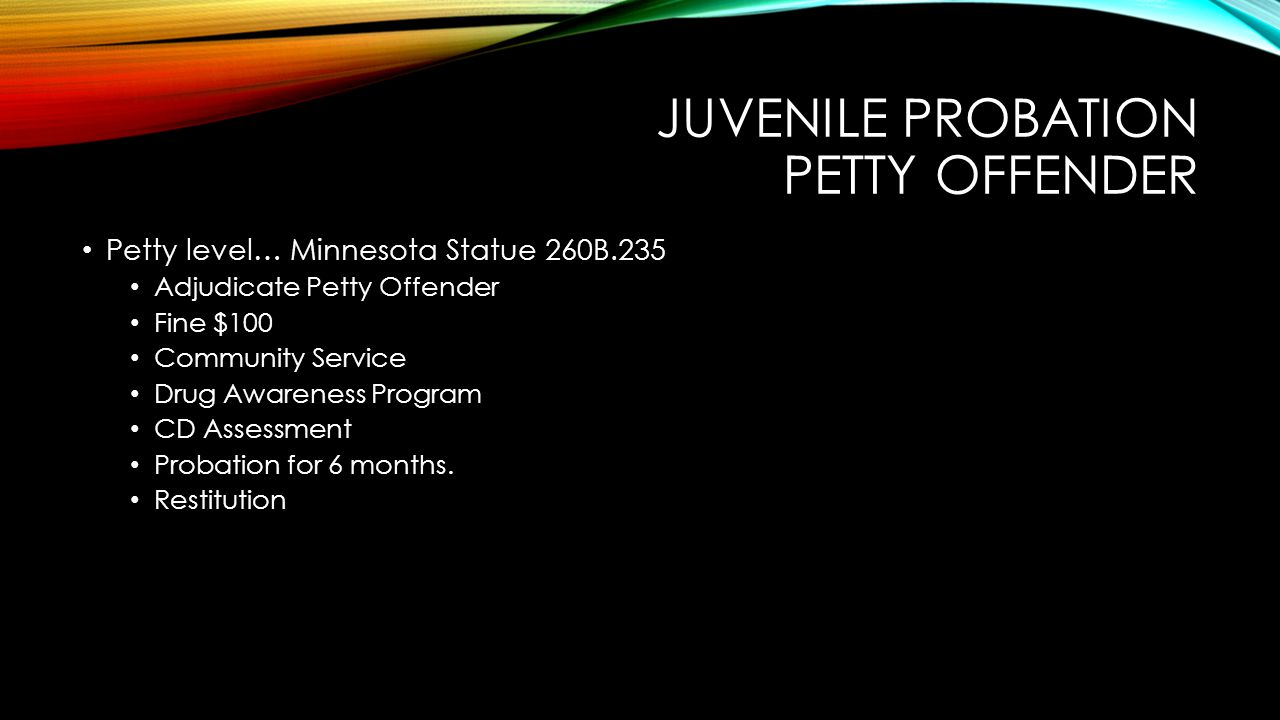 Juvenile probation petty offender