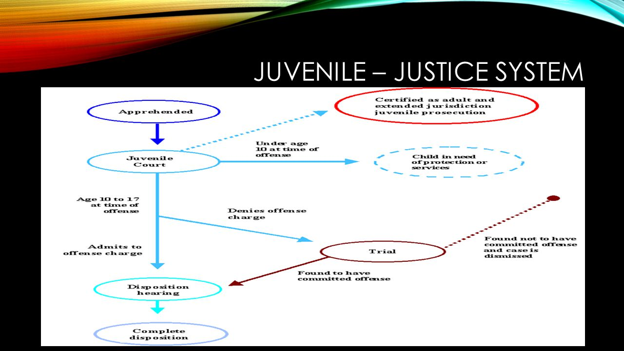 adult and juvenile justice system Goals of the juvenile justice system both california's adult and juvenile justice  systems have as one of their goals public safety california's adult system also.
