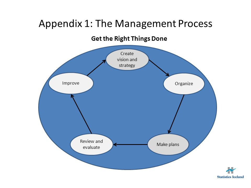 Appendix 1: The Management Process