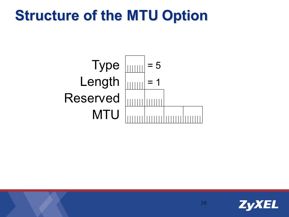 Structure of the MTU Option