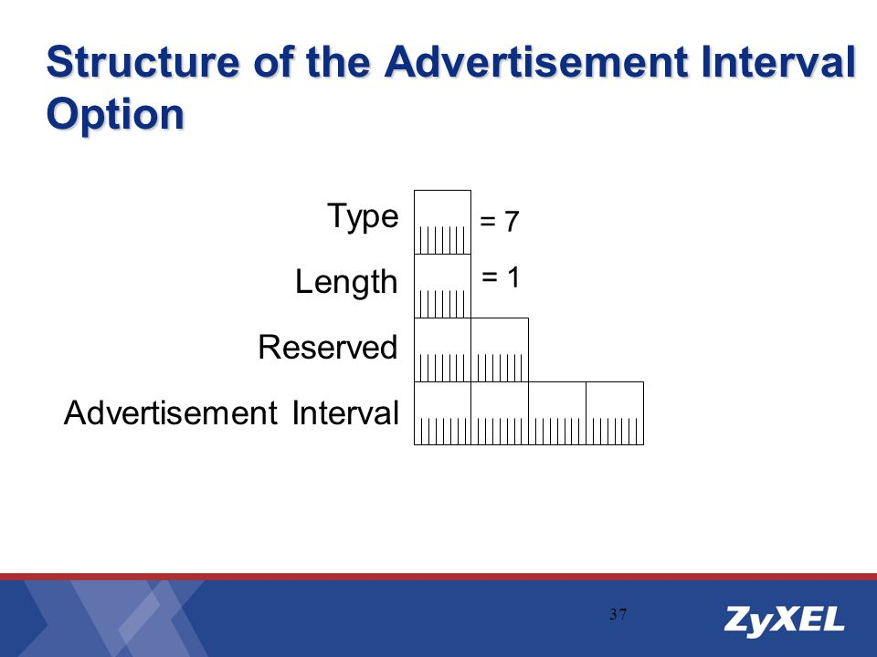 Structure of the Advertisement Interval Option