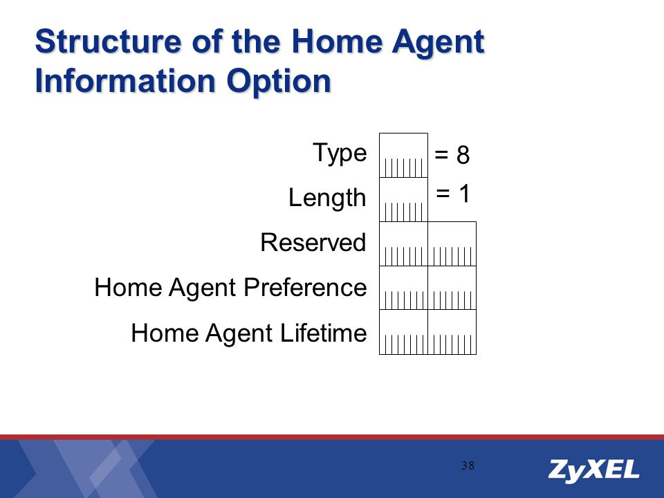 Structure of the Home Agent Information Option