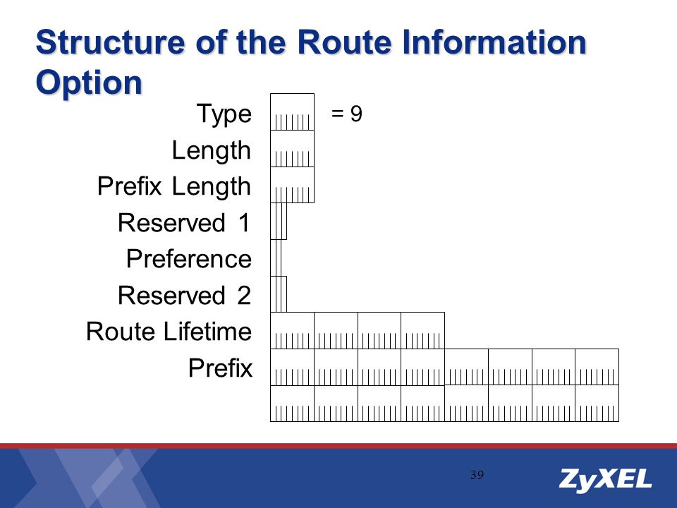 Structure of the Route Information Option