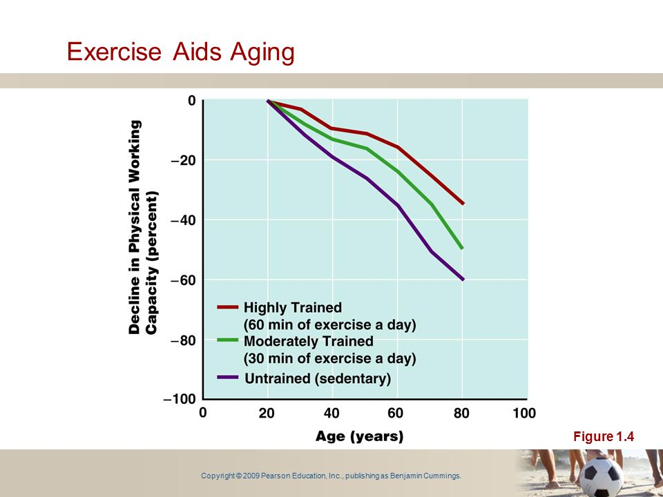 Exercise Aids Aging Figure 1.4