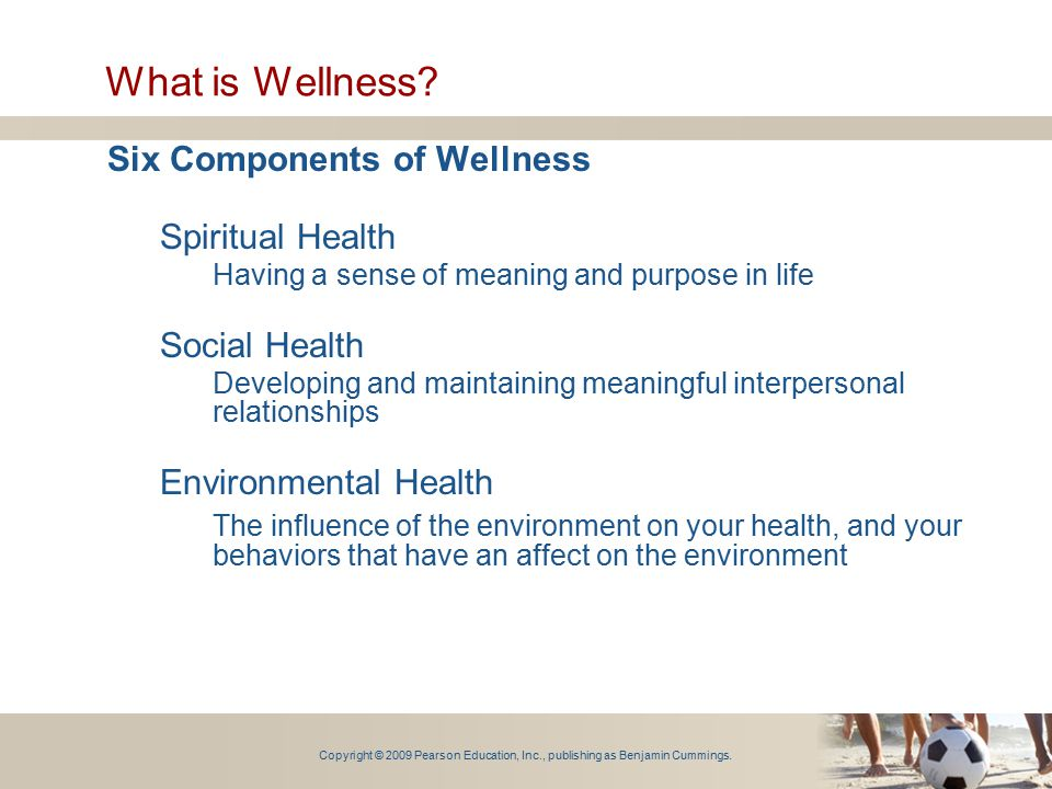 What is Wellness Six Components of Wellness